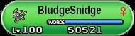 BludgerSnidget's NaNoWriMon
