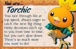 I am Torchic!